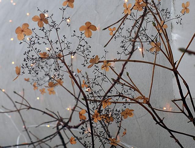 kukat-ja-valot