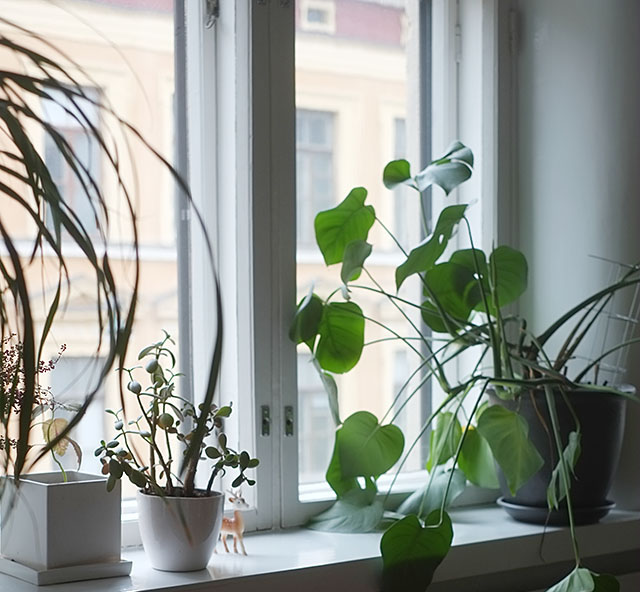 ikkunalauta