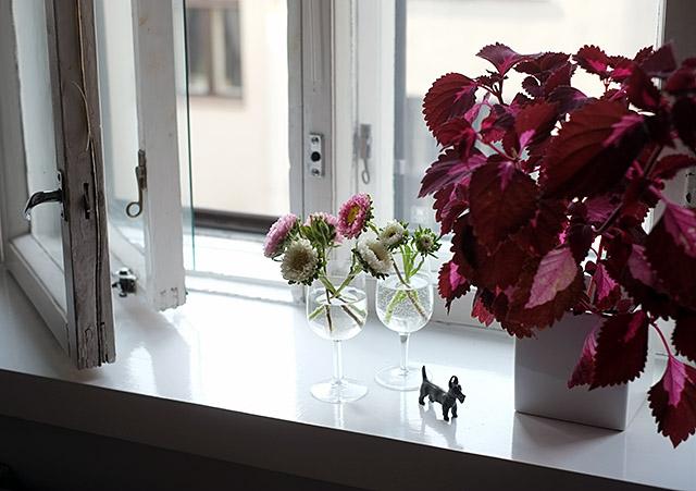 kukkia-ikkuna