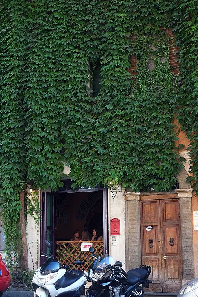 rome-green-and-plants-3