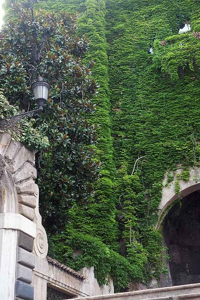rome-green-and-plants-4