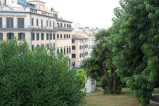 rome-plants-1
