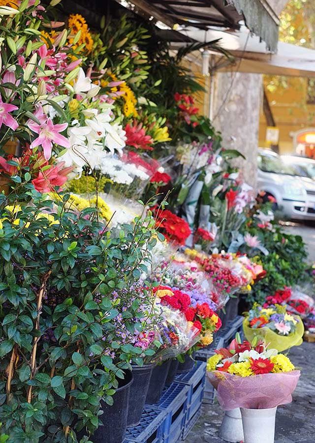 rome-plants
