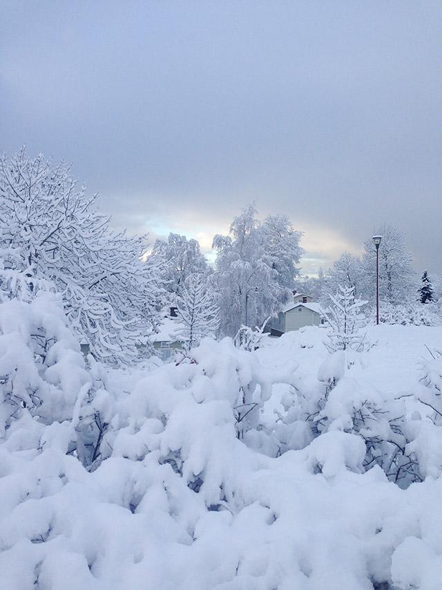 talvi-uudessakaupungissa-3