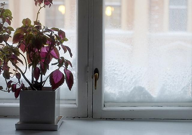 luminen-ikkuna-1