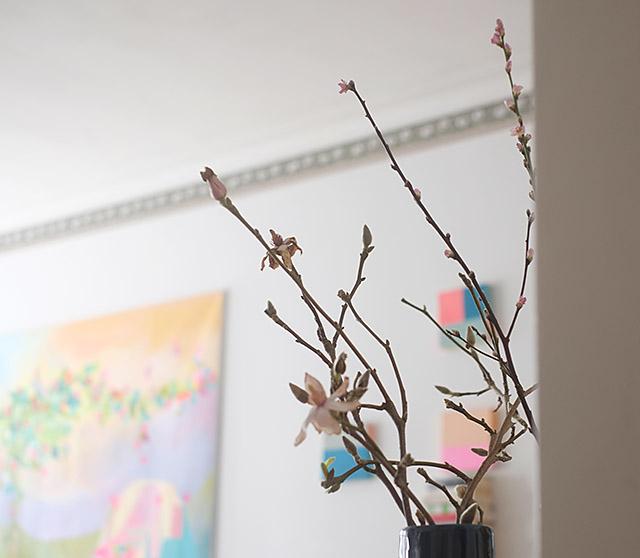 magnolian-oksa