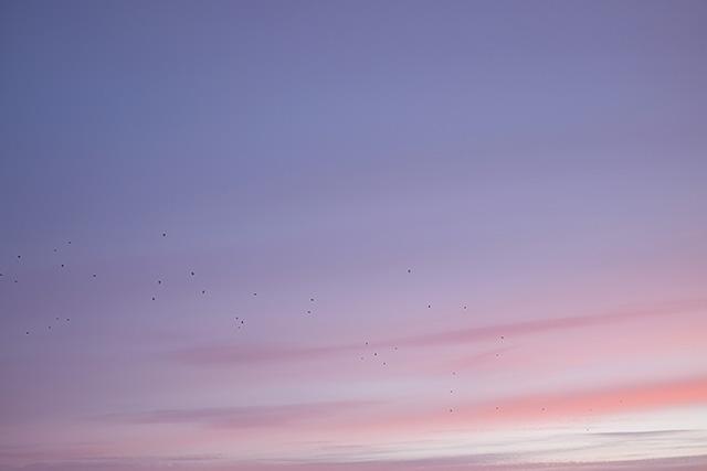 auringonlasku-3