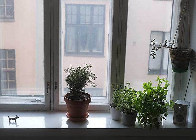 iltavalo-ikkunalauta