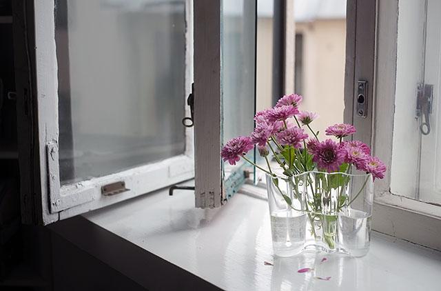 kukat-ikkunalaudalla-1