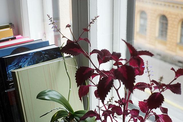 kirjat-ikkunalaudalla-1