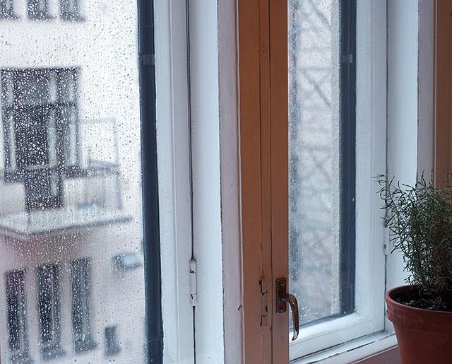 pisarat-ikkunassa-2