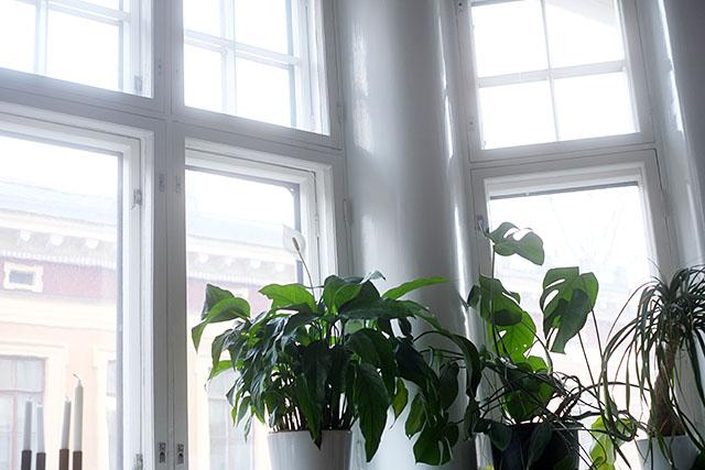 peikonlejti-ikkunalla