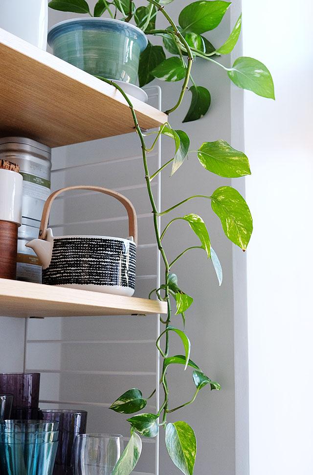 string-hylly-keittiossa-4